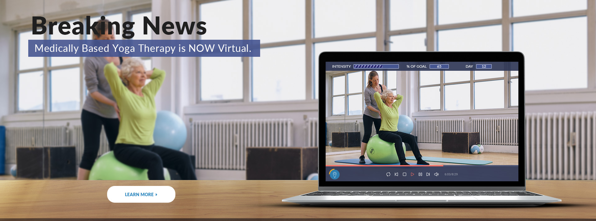 YogaMedics Virtual Therapy
